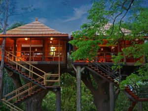 Ranger wood Nature Castle Machan Treehouse – THEKKADY