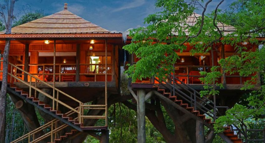 Top10 Tree Houses in Kerala