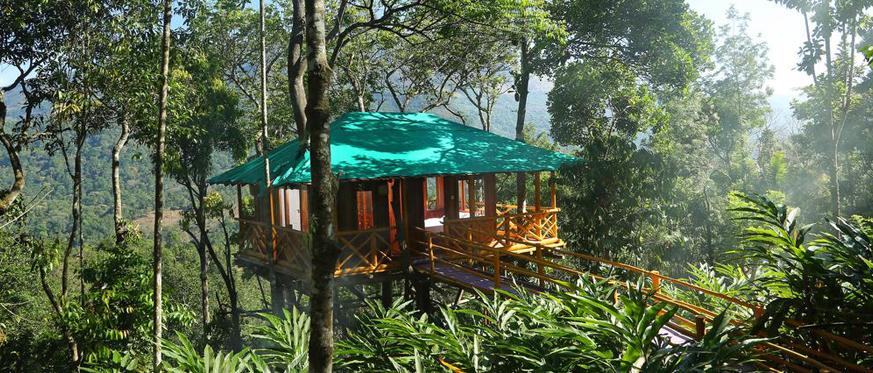 Romantic tree house resorts