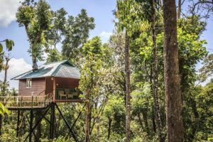 Kaivalyam Retreat – MUNNAR